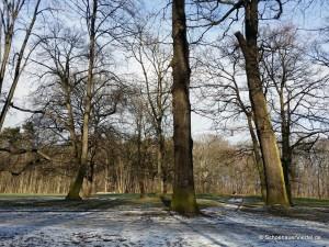 Winter im Schönauer Park