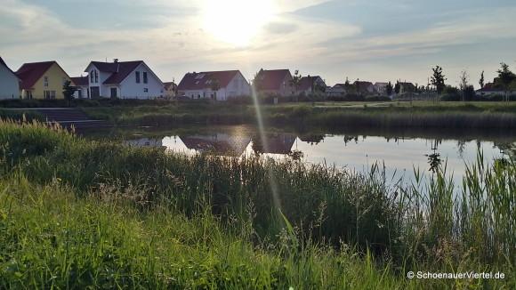 Teich am Stadtgärtchen